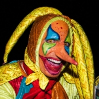 Theatrical-Make-up-Jester